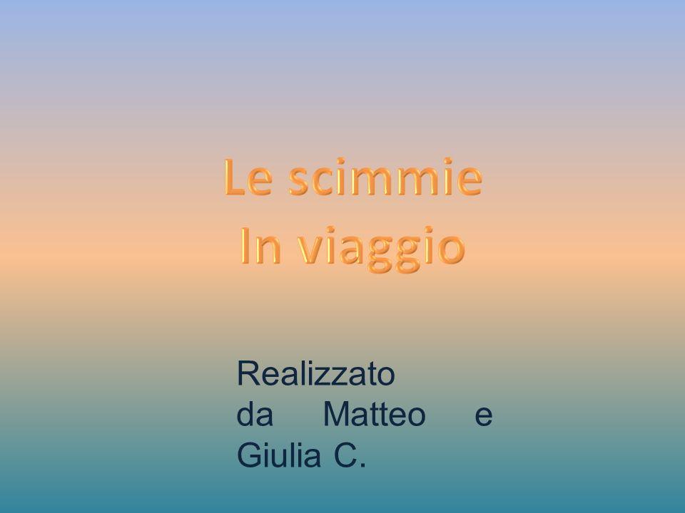 Realizzato da Matteo e Giulia C.