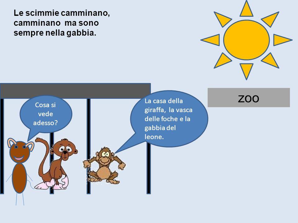 zoo Cosa si vede adesso? La casa della giraffa, la vasca delle foche e la gabbia del leone. Le scimmie camminano, camminano ma sono sempre nella gabbi