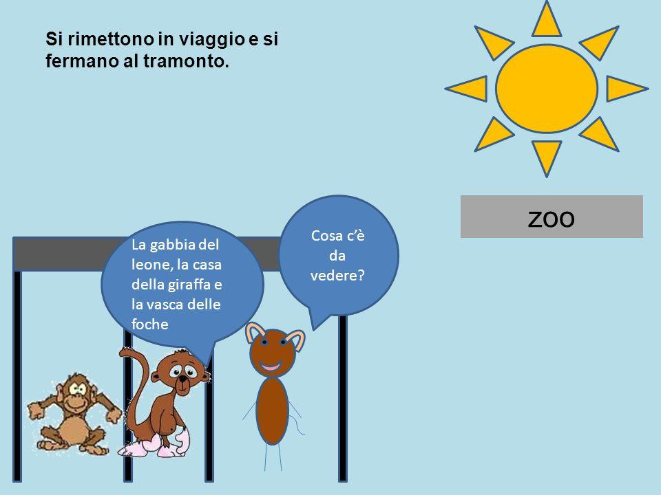 zoo Cosa cè da vedere? Si rimettono in viaggio e si fermano al tramonto. La gabbia del leone, la casa della giraffa e la vasca delle foche