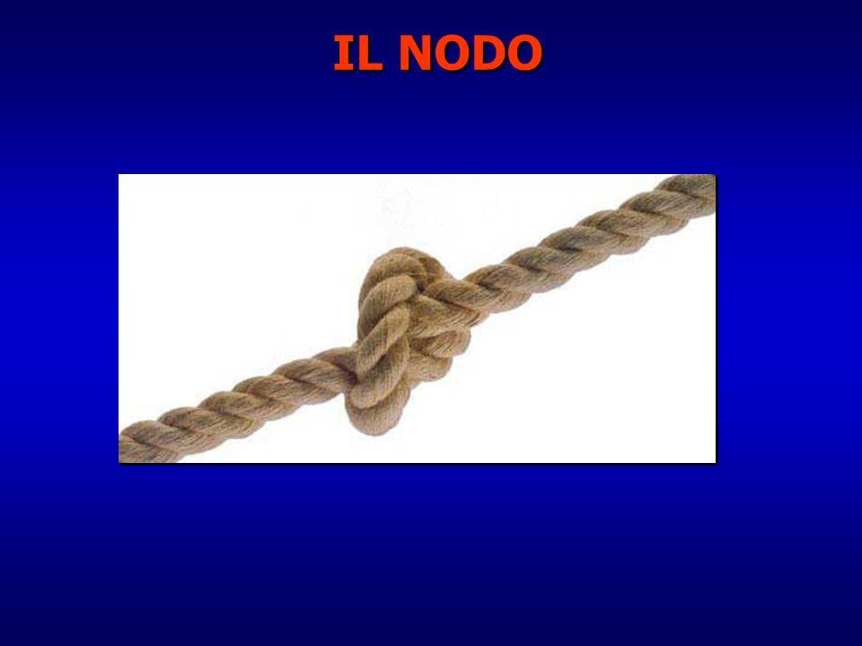 IL NODO