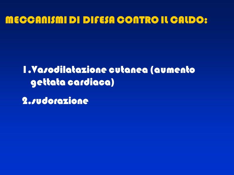 1.Vasodilatazione cutanea (aumento gettata cardiaca) 2.sudorazione MECCANISMI DI DIFESA CONTRO IL CALDO:
