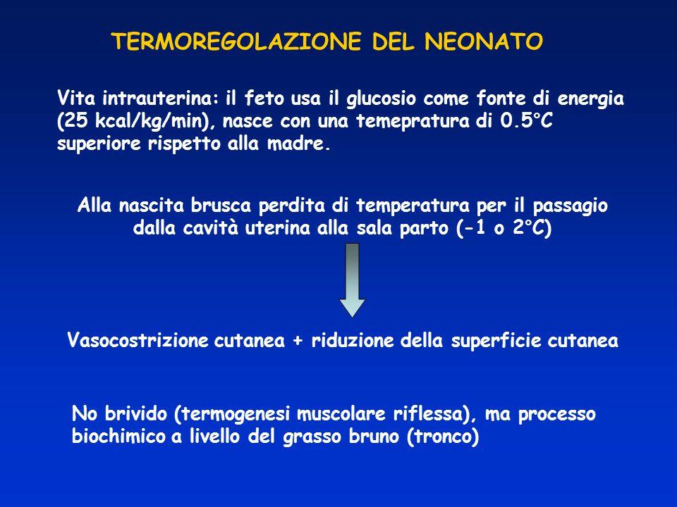 TERMOREGOLAZIONE DEL NEONATO Vita intrauterina: il feto usa il glucosio come fonte di energia (25 kcal/kg/min), nasce con una temepratura di 0.5°C sup