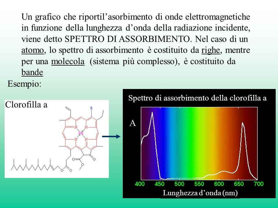 Un grafico che riportilasorbimento di onde elettromagnetiche in funzione della lunghezza donda della radiazione incidente, viene detto SPETTRO DI ASSORBIMENTO.