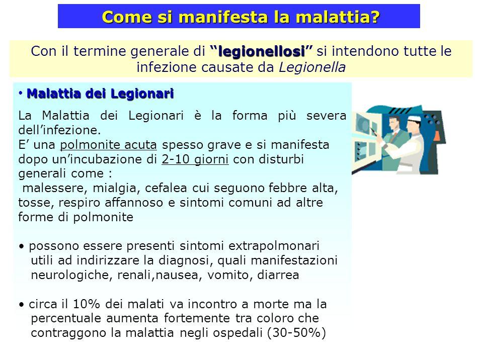 Come si manifesta la malattia? Malattia dei Legionari La Malattia dei Legionari è la forma più severa dellinfezione. E una polmonite acuta spesso grav