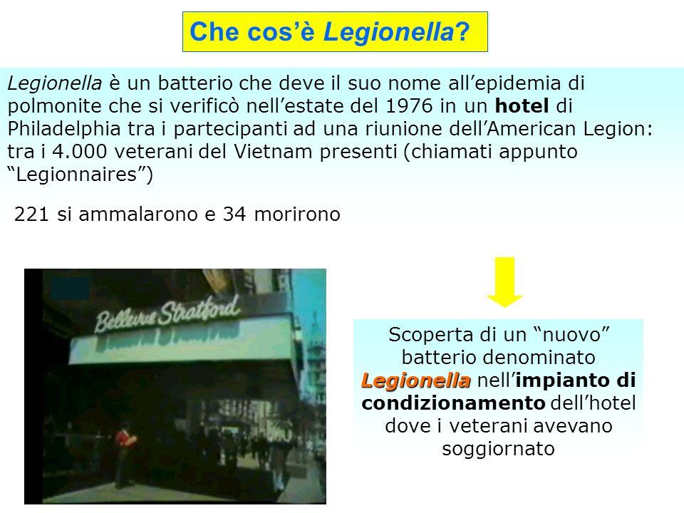 Legionella è un batterio che deve il suo nome allepidemia di polmonite che si verificò nellestate del 1976 in un hotel di Philadelphia tra i partecipa