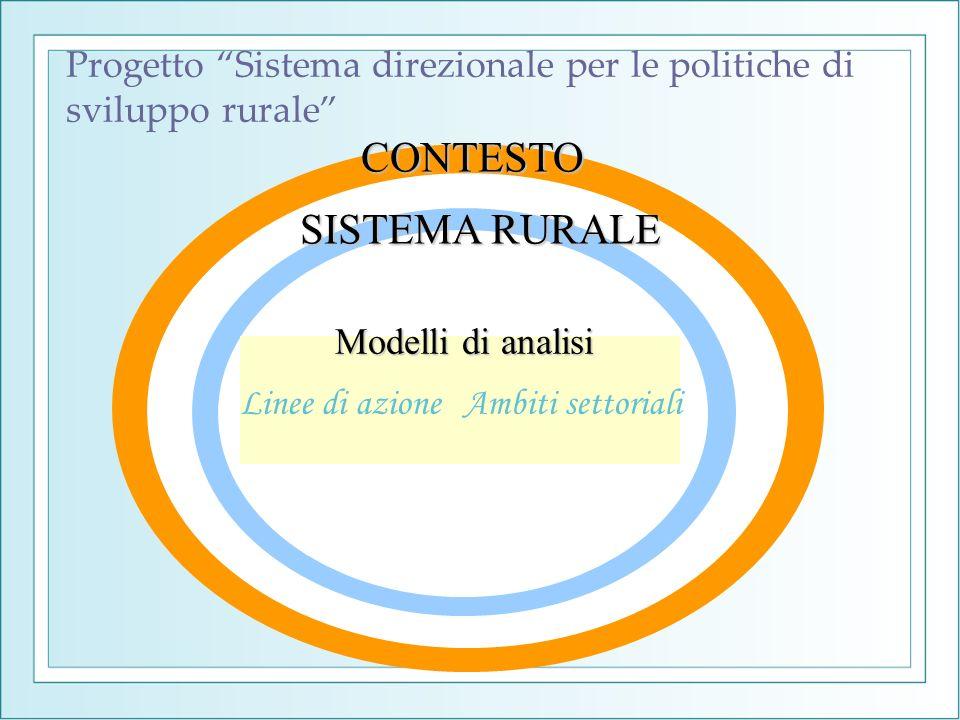 Progetto Sistema direzionale per le politiche di sviluppo rurale Linee di azioneAmbiti settoriali CONTESTO SISTEMA RURALE Modelli di analisi