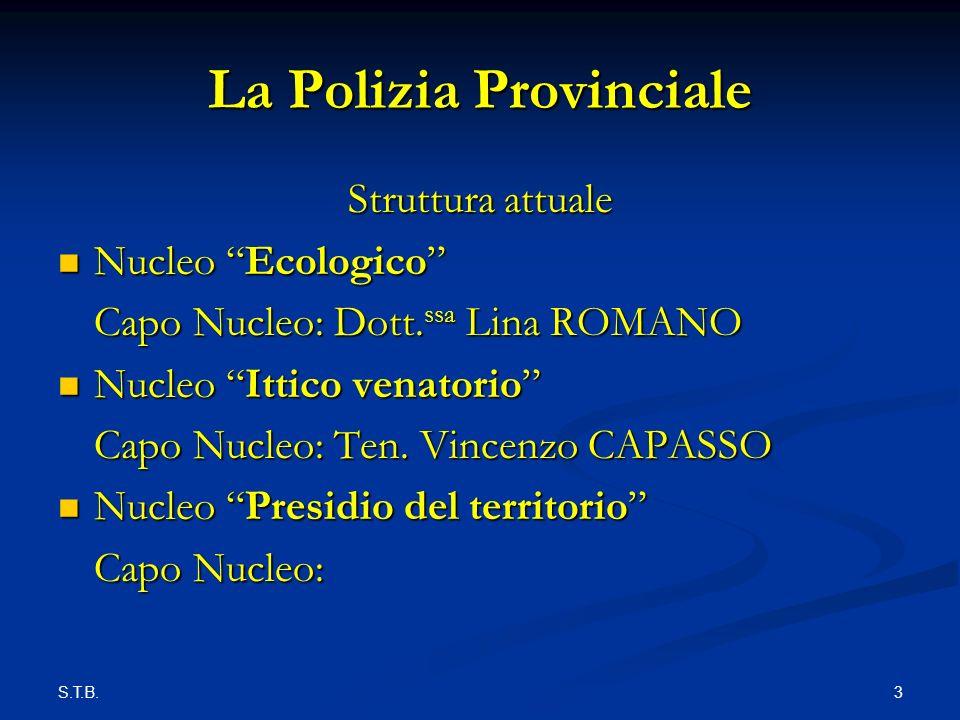 S.T.B.4 La Polizia Provinciale Competenze sono stabilite dallarticolo 19, comma 1, del D.Lgs.