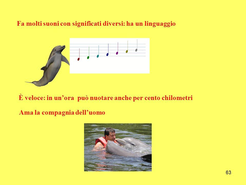 63 Fa molti suoni con significati diversi: ha un linguaggio È veloce: in unora può nuotare anche per cento chilometri Ama la compagnia delluomo