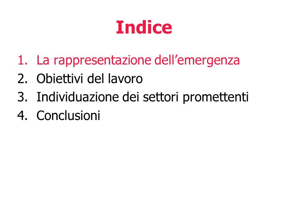 Indice 1.La rappresentazione dellemergenza 2.Obiettivi del lavoro 3.Individuazione dei settori promettenti 4.Conclusioni