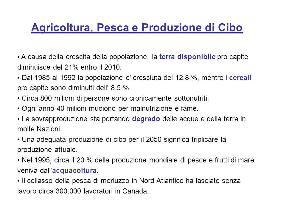 Agricoltura, Pesca e Produzione di Cibo A causa della crescita della popolazione, la terra disponibile pro capite diminuisce del 21% entro il 2010. Da