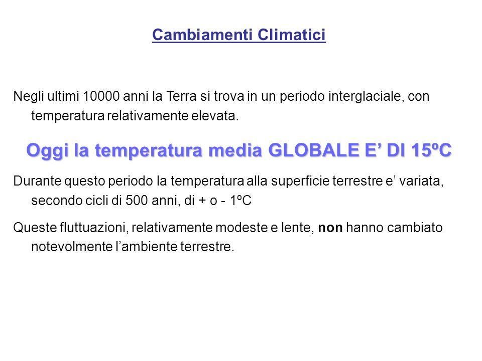 Cambiamenti Climatici Negli ultimi 10000 anni la Terra si trova in un periodo interglaciale, con temperatura relativamente elevata. Oggi la temperatur