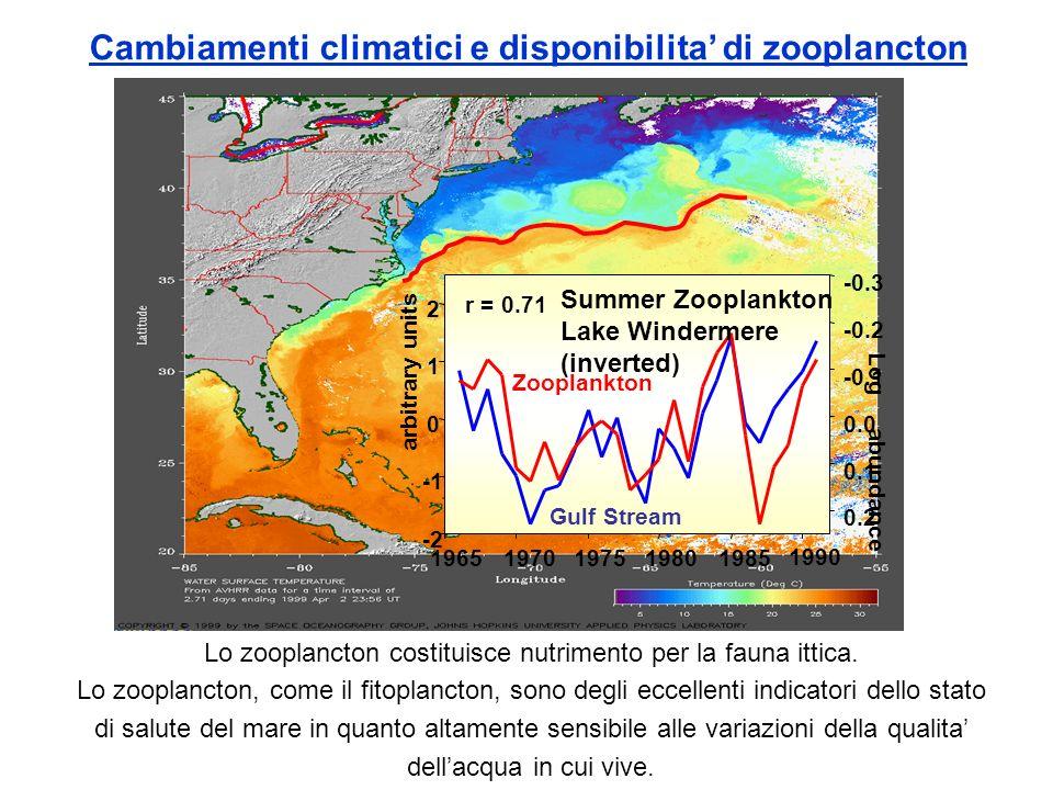 Cambiamenti climatici e disponibilita di zooplancton -2 0 1 2 19651970197519801985 1990 arbitrary units 0.2 0.1 0.0 -0.1 -0.2 -0.3 r = 0.71 Log abunda