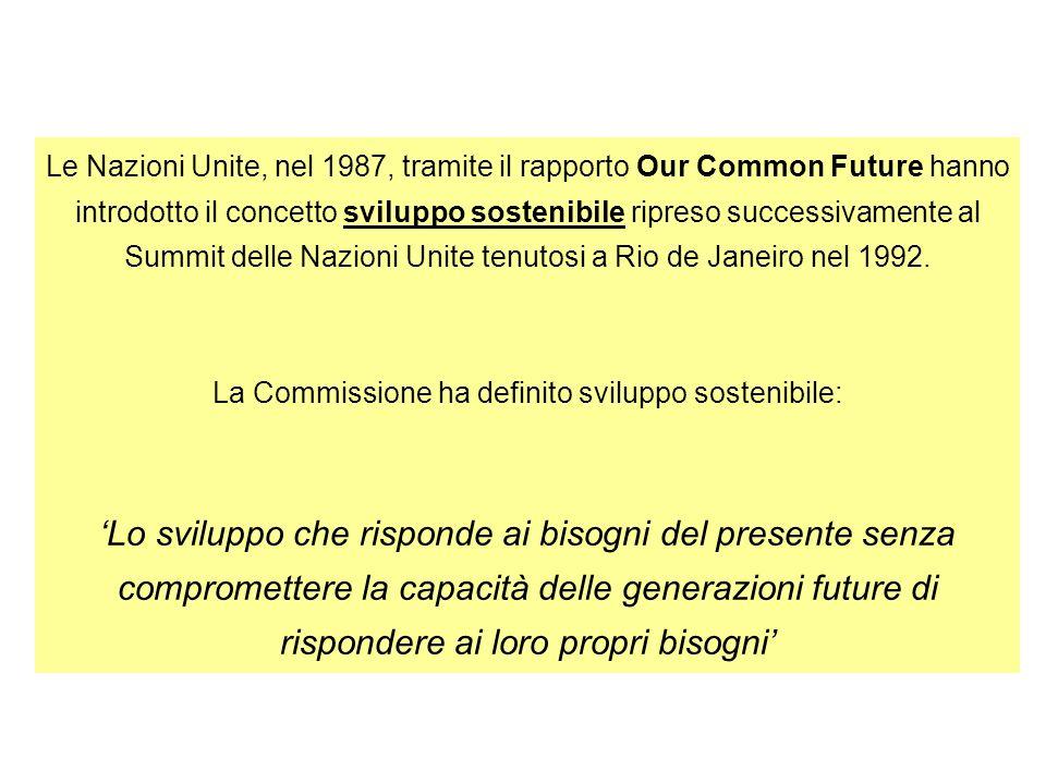 Le Nazioni Unite, nel 1987, tramite il rapporto Our Common Future hanno introdotto il concetto sviluppo sostenibile ripreso successivamente al Summit