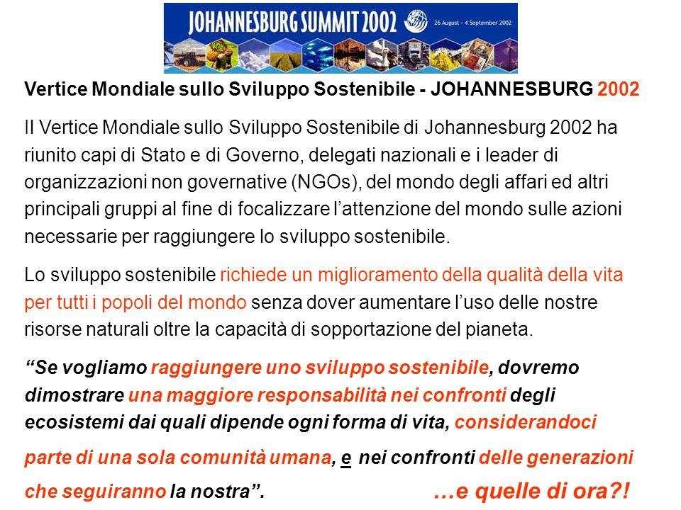 Vertice Mondiale sullo Sviluppo Sostenibile - JOHANNESBURG 2002 Il Vertice Mondiale sullo Sviluppo Sostenibile di Johannesburg 2002 ha riunito capi di