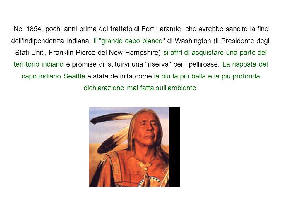 Nel 1854, pochi anni prima del trattato di Fort Laramie, che avrebbe sancito la fine dell'indipendenza indiana, il