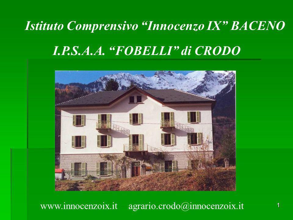 1 Istituto Comprensivo Innocenzo IX BACENO I.P.S.A.A. FOBELLI di CRODO www.innocenzoix.it – agrario.crodo@innocenzoix.it