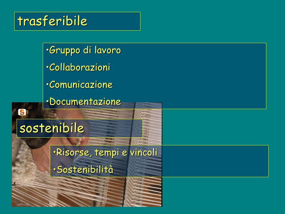 trasferibile sostenibile Risorse, tempi e vincoliRisorse, tempi e vincoli SostenibilitàSostenibilità Gruppo di lavoroGruppo di lavoro CollaborazioniCollaborazioni ComunicazioneComunicazione DocumentazioneDocumentazione
