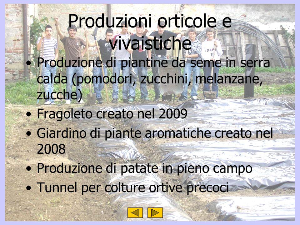 Produzioni orticole e vivaistiche Produzione di piantine da seme in serra calda (pomodori, zucchini, melanzane, zucche) Fragoleto creato nel 2009 Giar