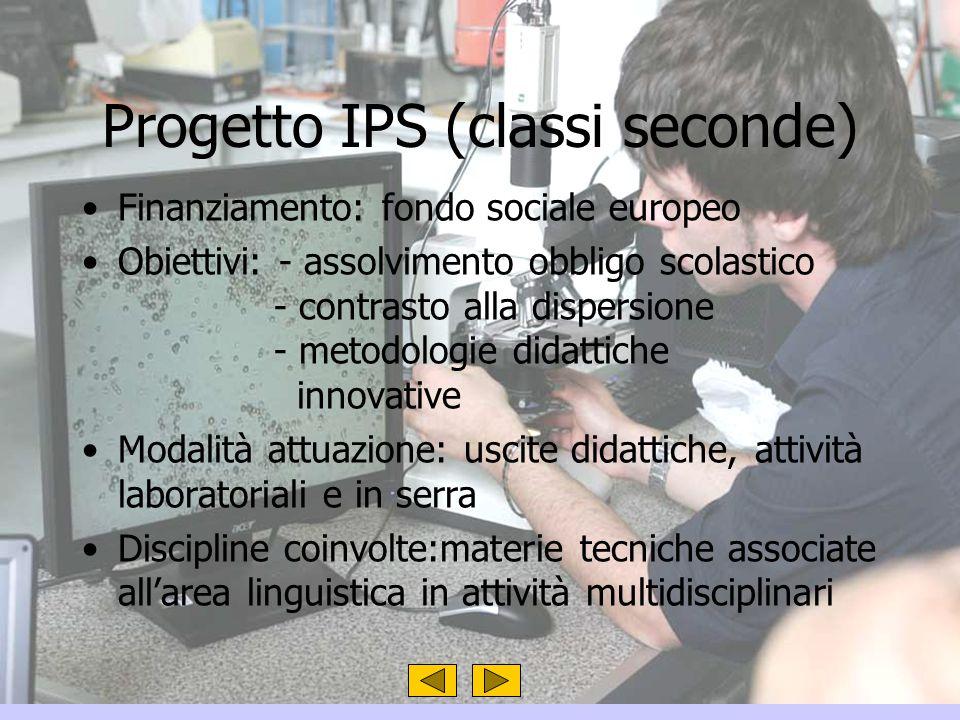 Progetto IPS (classi seconde) Finanziamento: fondo sociale europeo Obiettivi: - assolvimento obbligo scolastico - contrasto alla dispersione - metodol