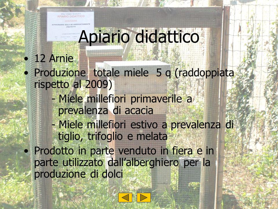 Apiario didattico 12 Arnie Produzione totale miele 5 q (raddoppiata rispetto al 2009) - Miele millefiori primaverile a prevalenza di acacia - Miele mi
