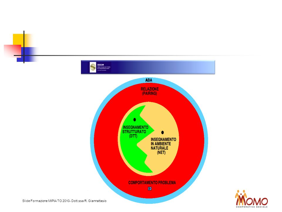 Slide Formazione MIPIA TO 2010- Dott.ssa R. Giannattasio