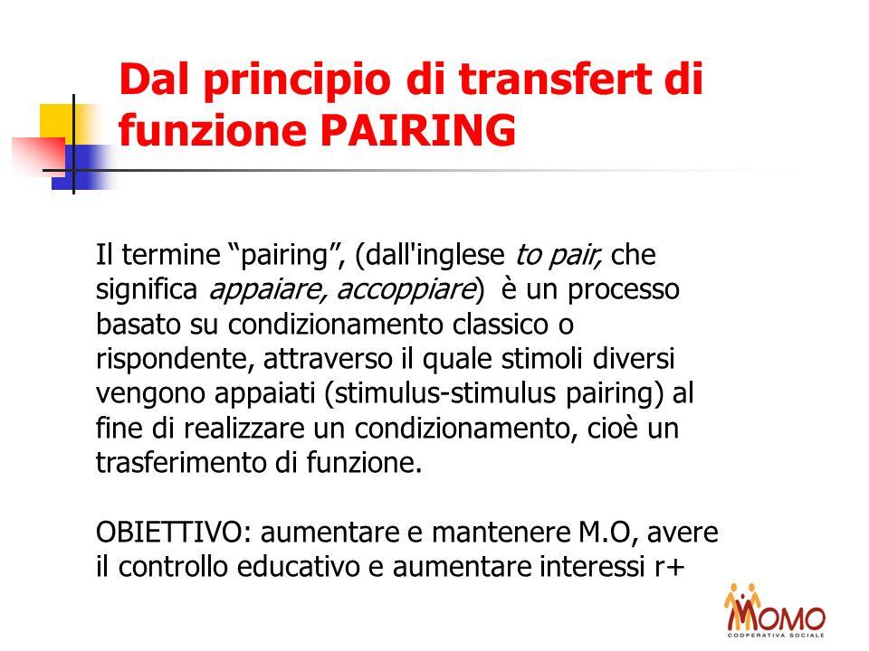 Dal principio di transfert di funzione PAIRING Il termine pairing, (dall'inglese to pair, che significa appaiare, accoppiare) è un processo basato su