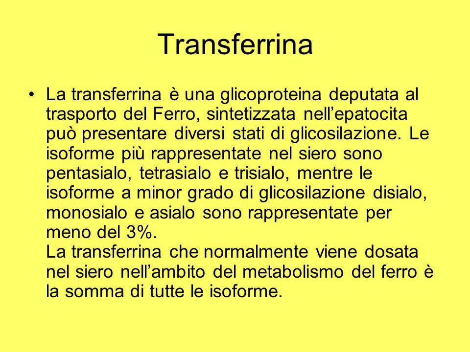 Transferrina La transferrina è una glicoproteina deputata al trasporto del Ferro, sintetizzata nellepatocita può presentare diversi stati di glicosila
