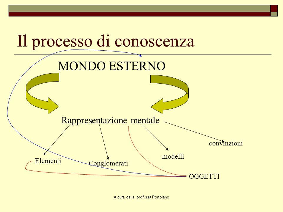 A cura della prof.ssa Portolano Un modello mentale concettuale è Una cornice allinterno della quale si compiono anticipazioni, si avanzano ipotesi, si