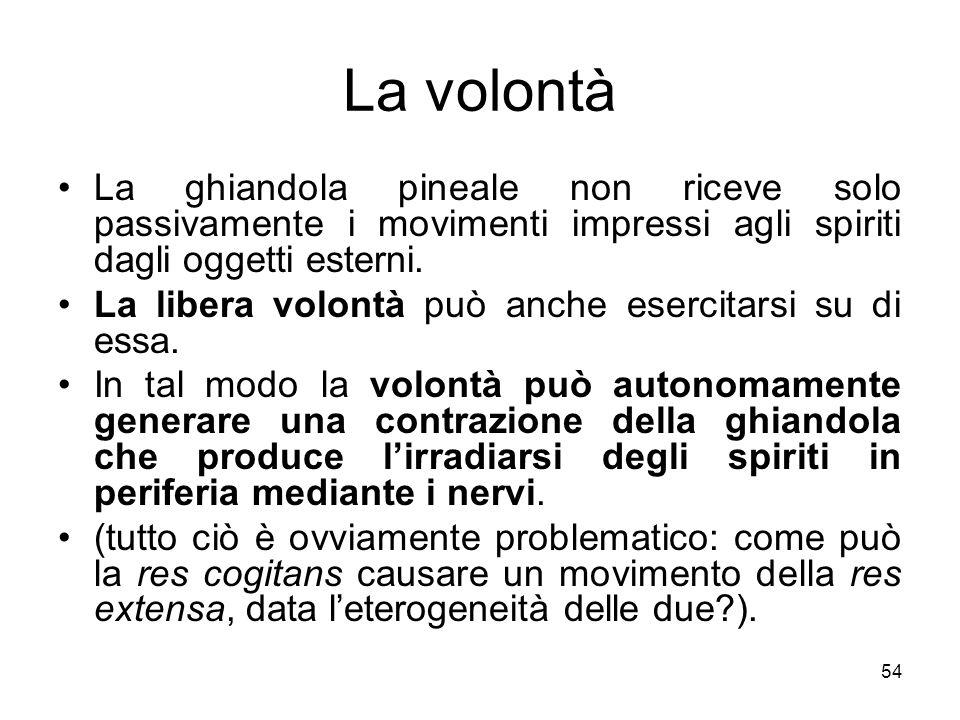 La volontà La ghiandola pineale non riceve solo passivamente i movimenti impressi agli spiriti dagli oggetti esterni. La libera volontà può anche eser