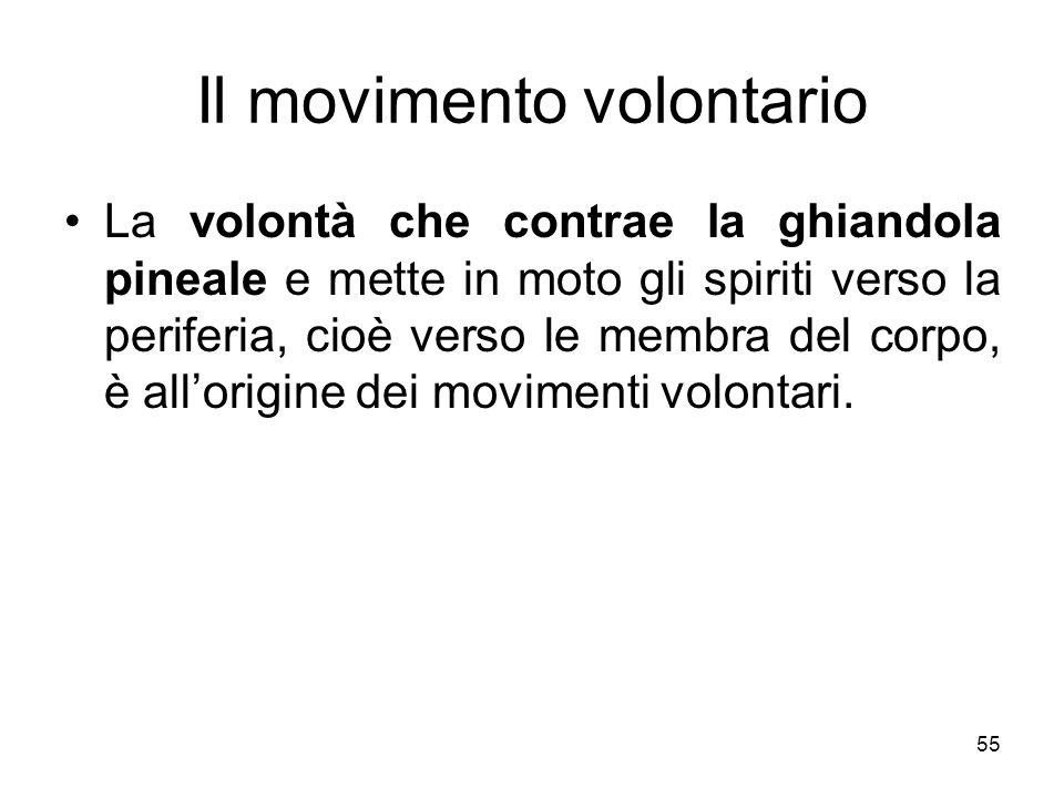 Il movimento volontario La volontà che contrae la ghiandola pineale e mette in moto gli spiriti verso la periferia, cioè verso le membra del corpo, è