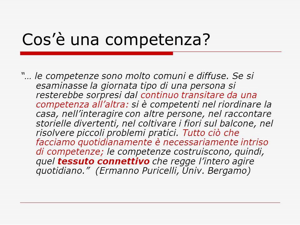 Cosè una competenza? … le competenze sono molto comuni e diffuse. Se si esaminasse la giornata tipo di una persona si resterebbe sorpresi dal continuo