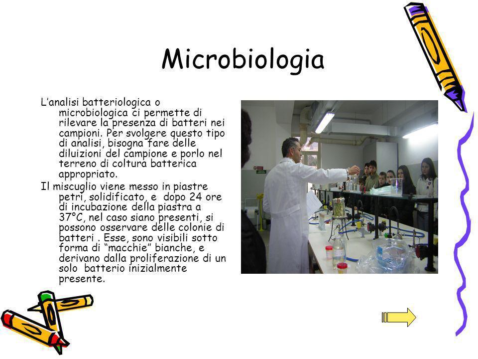 Lanalisi batteriologica o microbiologica ci permette di rilevare la presenza di batteri nei campioni. Per svolgere questo tipo di analisi, bisogna far