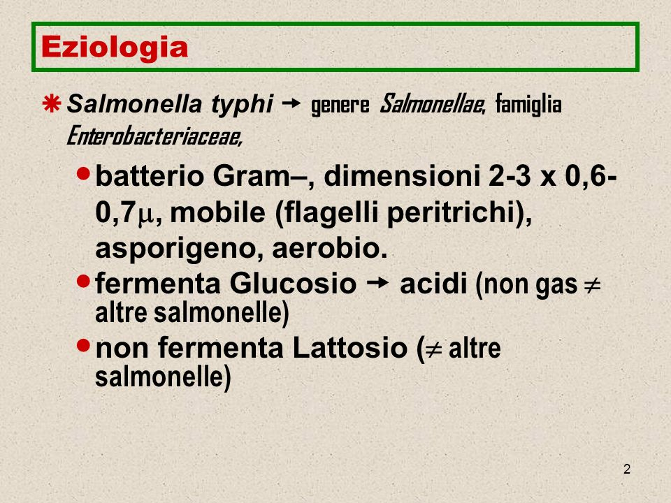2 Eziologia Salmonella typhi genere Salmonellae, famiglia Enterobacteriaceae, batterio Gram–, dimensioni 2-3 x 0,6- 0,7, mobile (flagelli peritrichi),