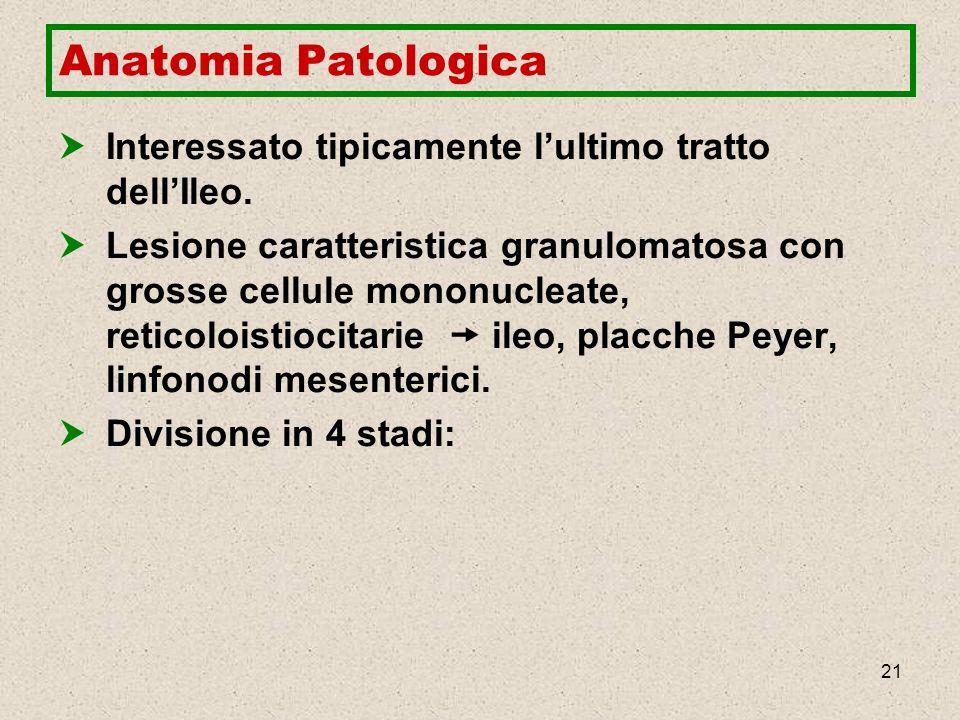 21 Anatomia Patologica Interessato tipicamente lultimo tratto dellIleo. Lesione caratteristica granulomatosa con grosse cellule mononucleate, reticolo