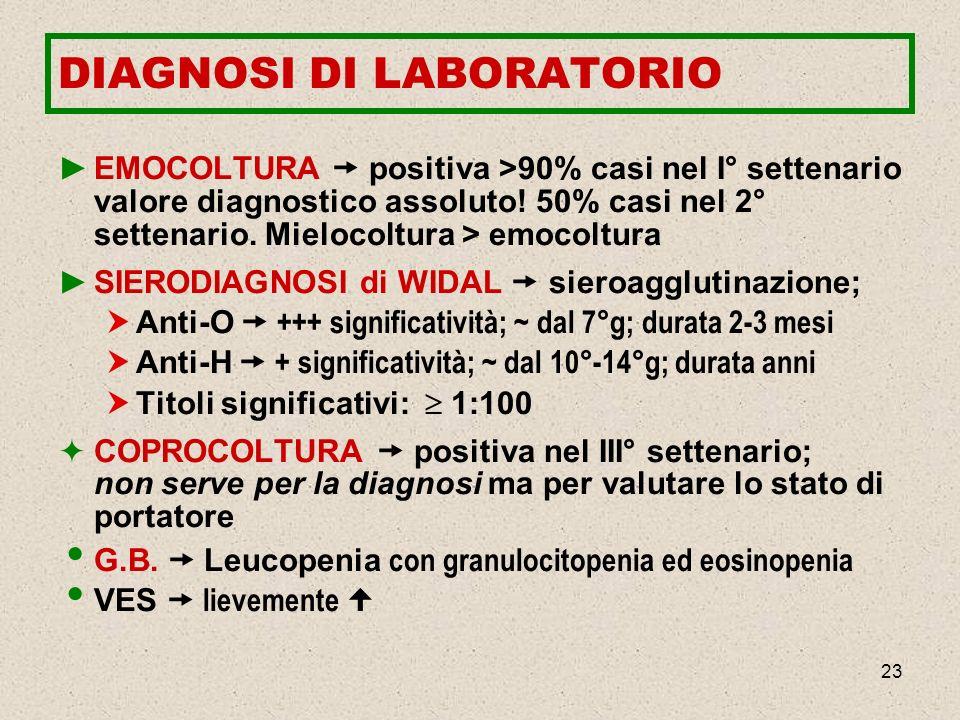 23 DIAGNOSI DI LABORATORIO EMOCOLTURA positiva >90% casi nel I° settenario valore diagnostico assoluto! 50% casi nel 2° settenario. Mielocoltura > emo