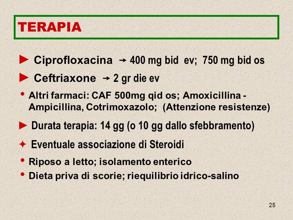 25 TERAPIA Ciprofloxacina 400 mg bid ev; 750 mg bid os Ceftriaxone 2 gr die ev Altri farmaci: CAF 500mg qid os; Amoxicillina - Ampicillina, Cotrimoxaz