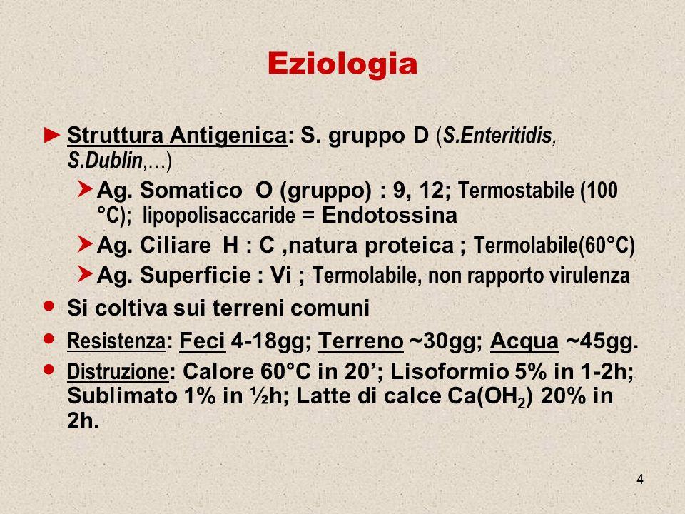 4 Eziologia Struttura Antigenica: S. gruppo D ( S.Enteritidis, S.Dublin,…) Ag. Somatico O (gruppo) : 9, 12; Termostabile (100 °C); lipopolisaccaride =