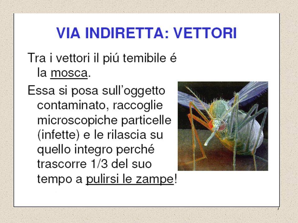 8 Epidemiologia UIncidenza malattia: max in estate Italia Malattia endemica nell Italia meridionale e insulare U Max.