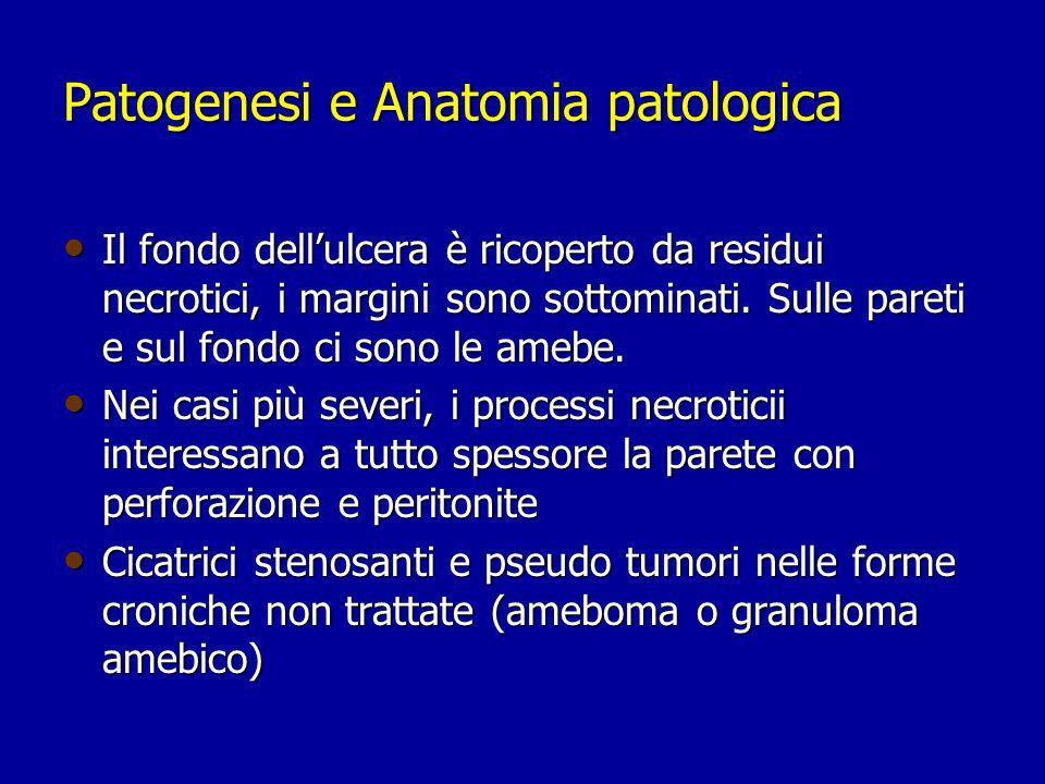 Patogenesi e Anatomia patologica Il fondo dellulcera è ricoperto da residui necrotici, i margini sono sottominati. Sulle pareti e sul fondo ci sono le