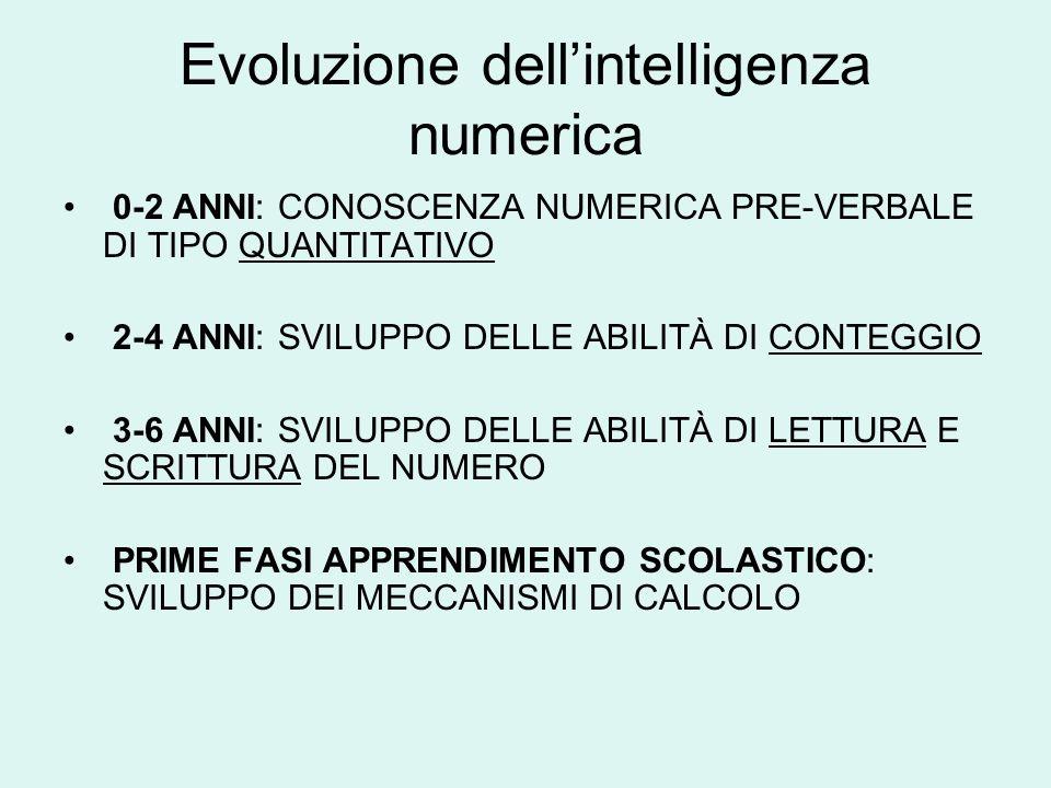 Evoluzione dellintelligenza numerica 0-2 ANNI: CONOSCENZA NUMERICA PRE-VERBALE DI TIPO QUANTITATIVO 2-4 ANNI: SVILUPPO DELLE ABILITÀ DI CONTEGGIO 3-6