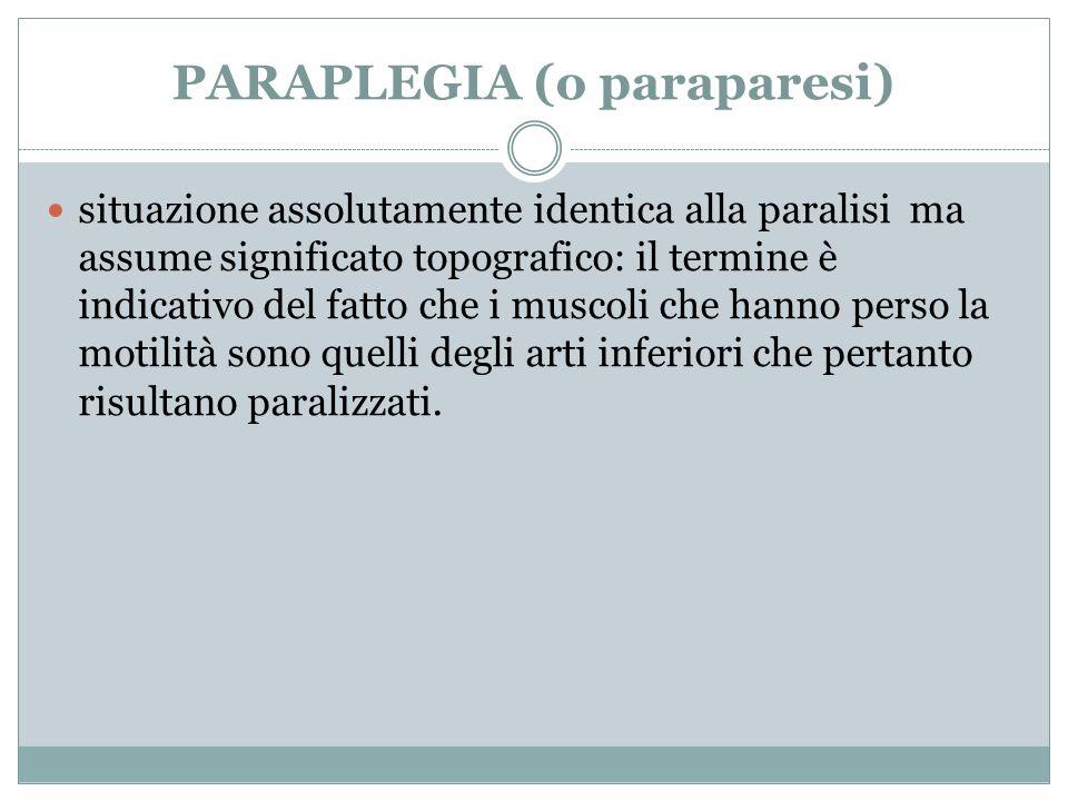 PARAPLEGIA (o paraparesi) situazione assolutamente identica alla paralisi ma assume significato topografico: il termine è indicativo del fatto che i m