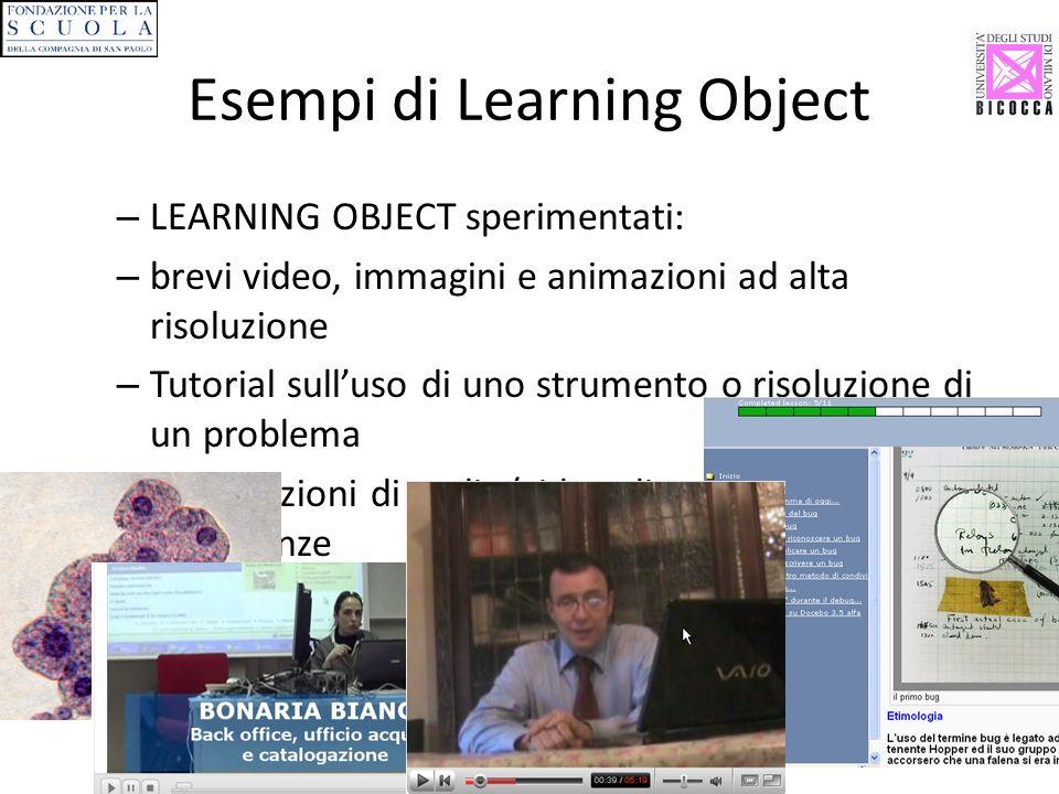 Esempi di Learning Object – LEARNING OBJECT sperimentati: – brevi video, immagini e animazioni ad alta risoluzione – Tutorial sulluso di uno strumento