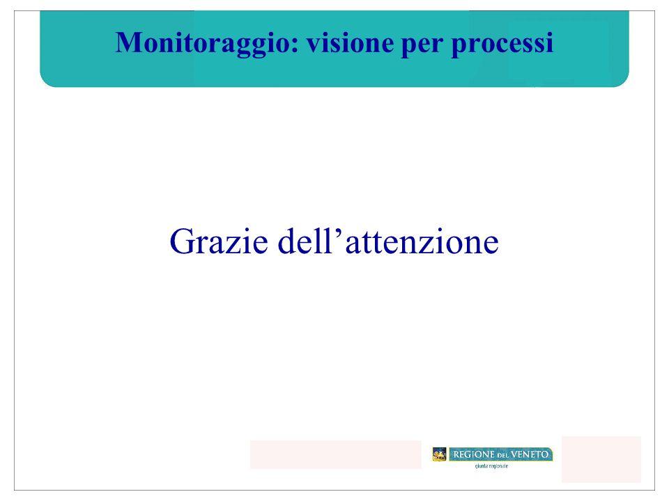 Monitoraggio: visione per processi Grazie dellattenzione