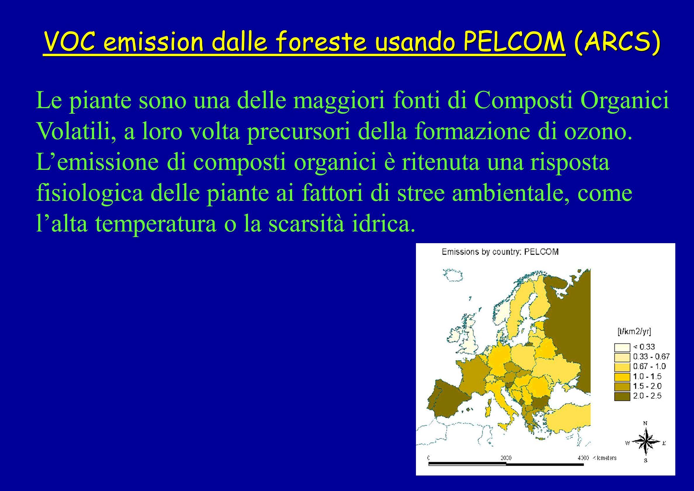 VOC emission dalle foreste usando PELCOM (ARCS) Le piante sono una delle maggiori fonti di Composti Organici Volatili, a loro volta precursori della f