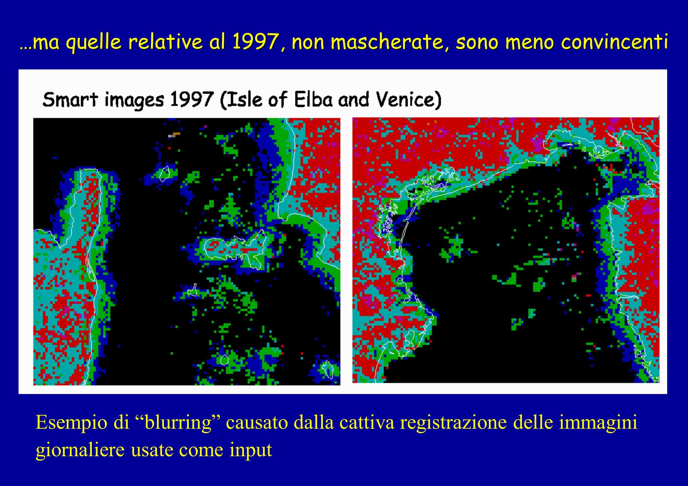 …ma quelle relative al 1997, non mascherate, sono meno convincenti Esempio di blurring causato dalla cattiva registrazione delle immagini giornaliere