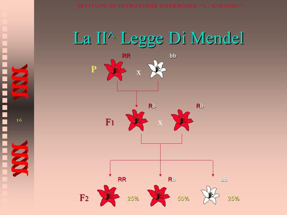 15 Istituto di istruzione superiore l. einaudi La II^ Legge Di Mendel O Legge Della Disgiunzione O Segregazione Degli alleli Nei Gameti O Legge Della