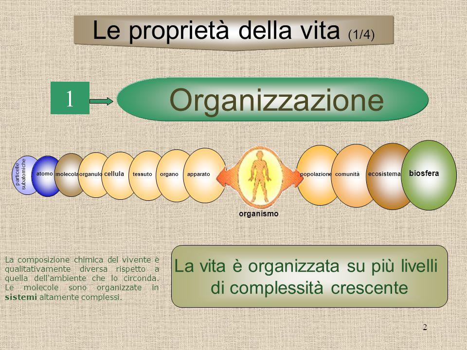 2 1 La vita è organizzata su più livelli di complessità crescente Organizzazione particelle subatomiche atomo molecolapopolazionecomunità ecosistema b