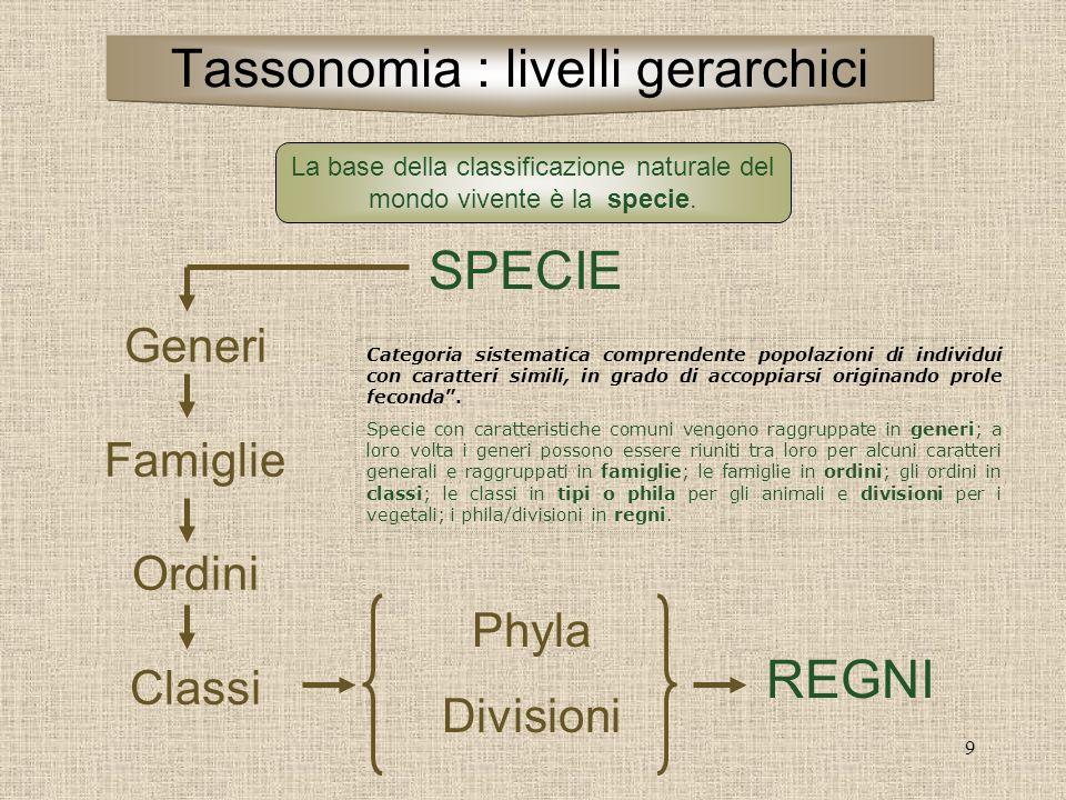 9 SPECIE Generi Famiglie Ordini Classi Phyla Divisioni REGNI La base della classificazione naturale del mondo vivente è la specie. Tassonomia : livell
