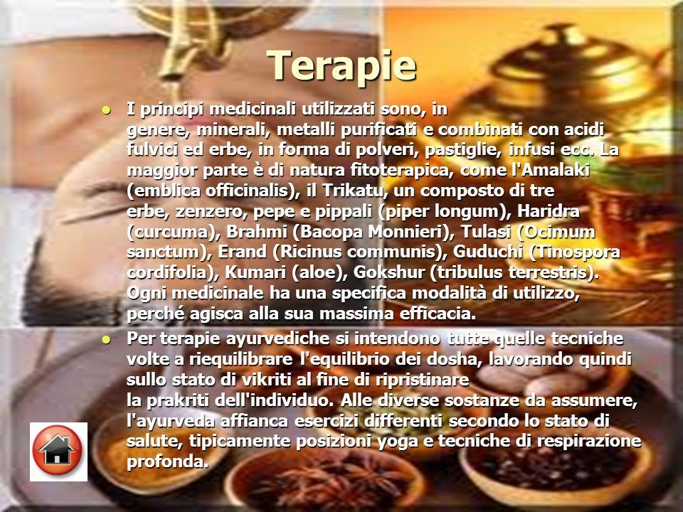 Terapie I principi medicinali utilizzati sono, in genere, minerali, metalli purificati e combinati con acidi fulvici ed erbe, in forma di polveri, pastiglie, infusi ecc.