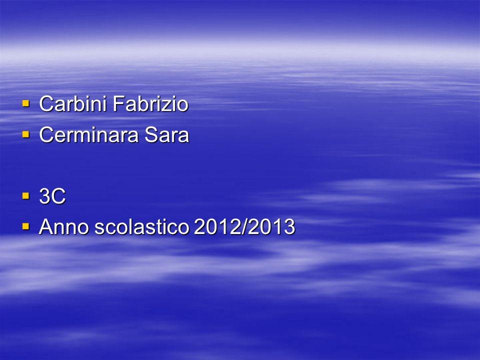 Carbini Fabrizio Carbini Fabrizio Cerminara Sara Cerminara Sara 3C 3C Anno scolastico 2012/2013 Anno scolastico 2012/2013